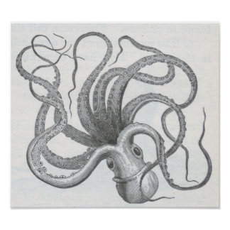 James Johonnot - Octopus Poster