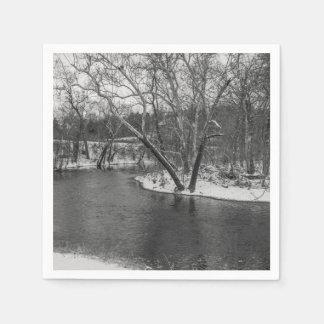 James River Cuts Back Grayscale Paper Napkin