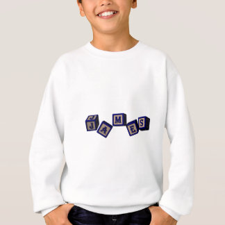 James toy blocks in blue. Great gift for loved one Sweatshirt