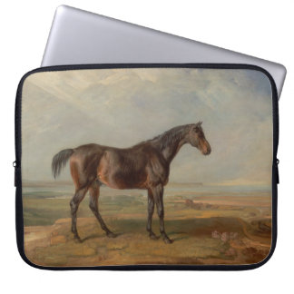 James Ward - Dr. Syntax, a Bay Racehorse Computer Sleeve