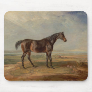 James Ward - Dr. Syntax, a Bay Racehorse Mouse Pad
