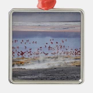 James's Flamingo, Phoenicoparrus jamesi Metal Ornament