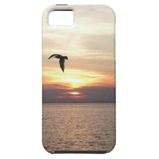 Jamestown iPhone Case iPhone 5 Cover