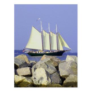Jamestown Sailboat Postcard