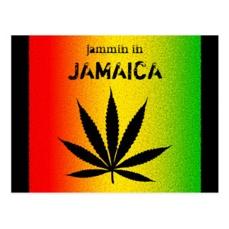 Jammin in Jamaica Reggae Rasta Postcard Post Cards