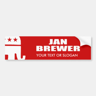 JAN BREWER FOR GOVERNOR BUMPER STICKERS