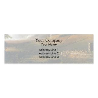 Jan Siberechts- Landscape with Rainbow Henley Business Cards
