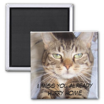 HURRY HOME I MISS YOU ALREADY Fridge Magnets by HappyCatDesign