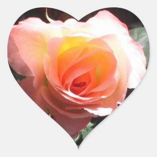 Janes Rose Sticker