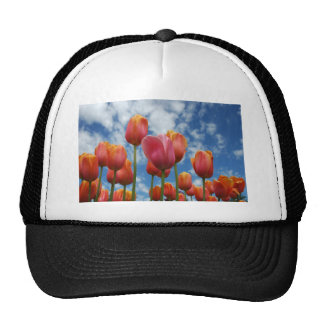Janesville Wisconsin Hats