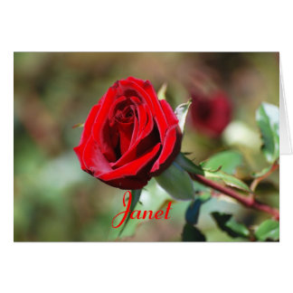 Janet Happy Birthday Red Rose Card
