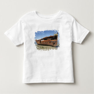 Janie Seddon Shipwreck, Motueka, Nelson Toddler T-shirt