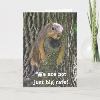 January 21st is National Squirrel Appreciation Day Card