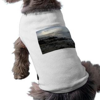 January Beach Shirt