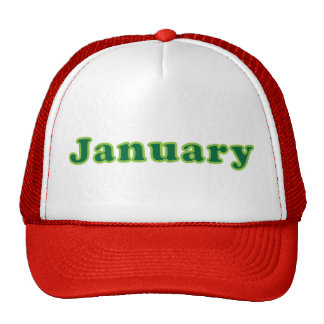 January Trucker Hat