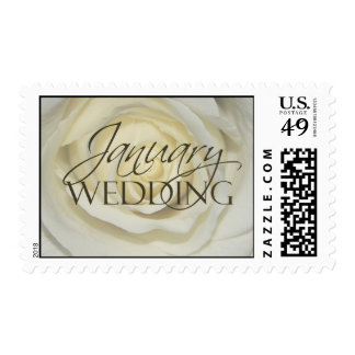 January Wedding Postage Rose
