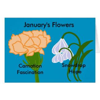 January's flowers  blank card