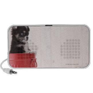 Japan 4 portable speaker