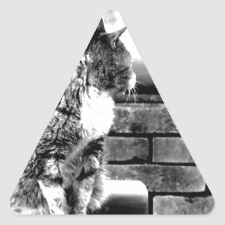japan art photographer design tokyo edition 2016 triangle sticker