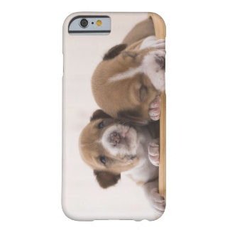 Japan Barely There iPhone 6 Case