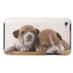 Case-Mate iPod Touch Barely There Case with Basenji Phone Cases design