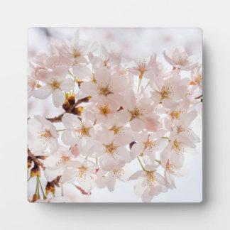 Japan Cherry Blossom Plaque