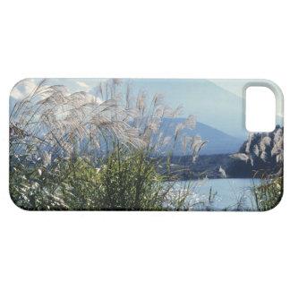 Japan, Honshu, Yamanashi Pref., Fuji-Hakone-Izu iPhone SE/5/5s Case