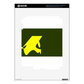 Japan-Katakana Flag Skin For iPad 3