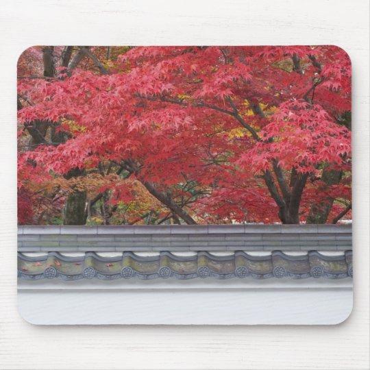 Japan, Kyoto, Autumn Color at Eikando Temple Mouse Pad
