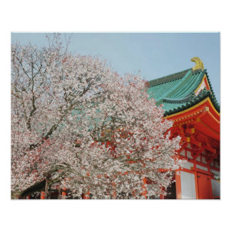 Japan, Kyoto. Cherry blossom of Shinto Poster