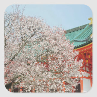 Japan, Kyoto. Cherry blossom of Shinto Square Sticker