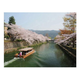 Japan, Kyoto. Flower viewing on the boat Postcard
