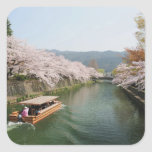 Japan, Kyoto. Flower viewing on the boat Square Sticker