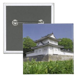 Japan, Kyoto, Nijo Castle Pin