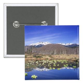 Japan, Nagano, Norikura, Mt. Norikura & Button