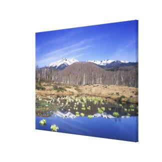 Japan, Nagano, Norikura, Mt. Norikura & Canvas Print