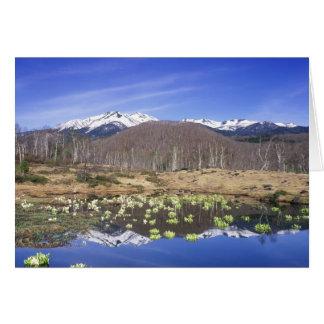Japan, Nagano, Norikura, Mt. Norikura & Greeting Cards
