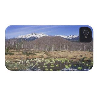 Japan, Nagano, Norikura, Mt. Norikura & Blackberry Bold Covers