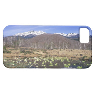 Japan, Nagano, Norikura, Mt. Norikura & iPhone 5 Covers