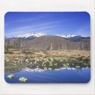 Japan, Nagano, Norikura, Mt. Norikura & Mousepads