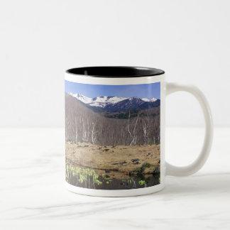 Japan, Nagano, Norikura, Mt. Norikura & Coffee Mugs