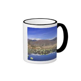 Japan, Nagano, Norikura, Mt. Norikura & Mugs