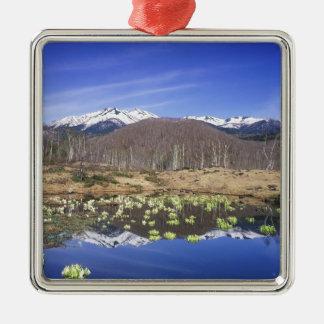 Japan, Nagano, Norikura, Mt. Norikura & Ornament