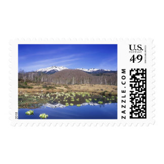 Japan, Nagano, Norikura, Mt. Norikura & Postage Stamp