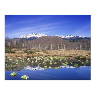 Japan, Nagano, Norikura, Mt. Norikura & Postcard