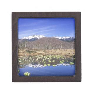 Japan, Nagano, Norikura, Mt. Norikura & Premium Gift Boxes