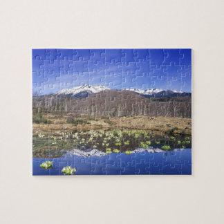 Japan, Nagano, Norikura, Mt. Norikura & Puzzle