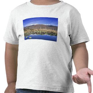 Japan, Nagano, Norikura, Mt. Norikura & T-shirts