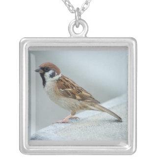 Japan sparrow bird necklace
