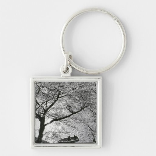 Japan, Tokyo. Cherry blossoms in the Imperial Keychain